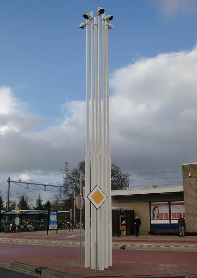 A041---verjongende-masten-groep-masten-foto-2